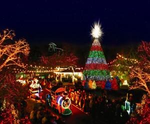 Tanglewood Park Christmas Lights